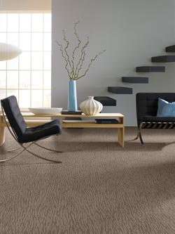Carpet Flooring in Lititz, PA
